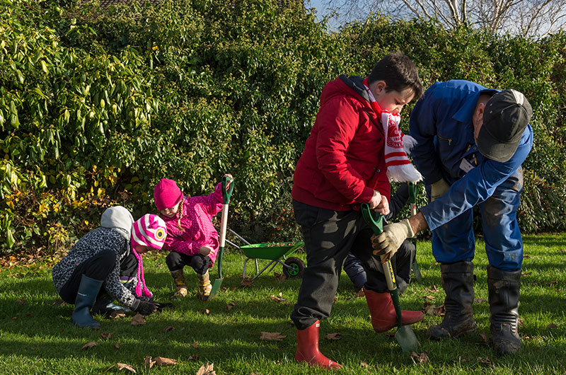 Children planting bulbs in grass with spades, with help from an adult.