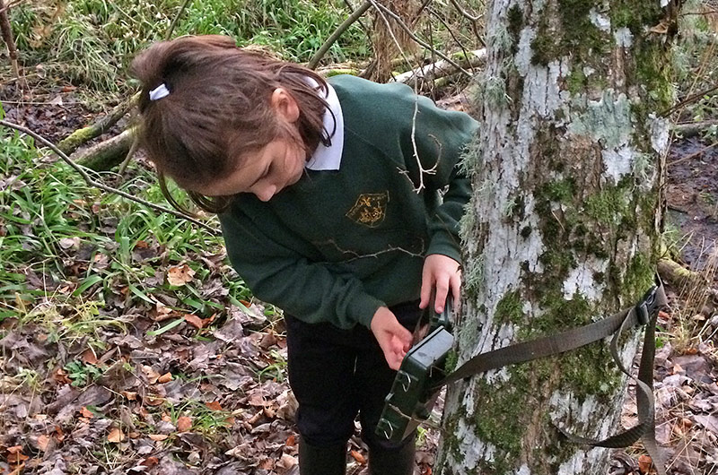 Picture of a school child preparing a camera trap attached to a tree in a woodland.