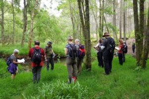 Picture of a group of people standing in a forest at Crathes at a NESBReC events.
