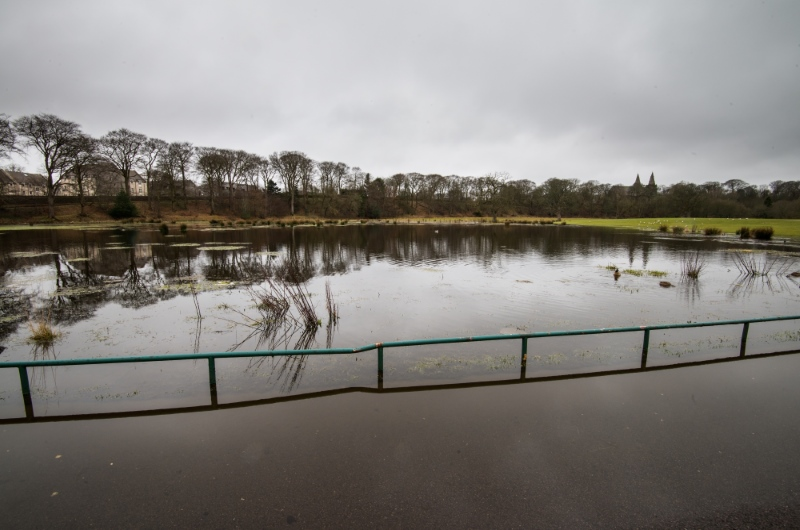 Picture of the extent of flooding at Seaton Park, with large grass areas and the road under water.